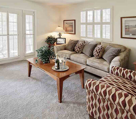 Spacious Large Window Living Rooms